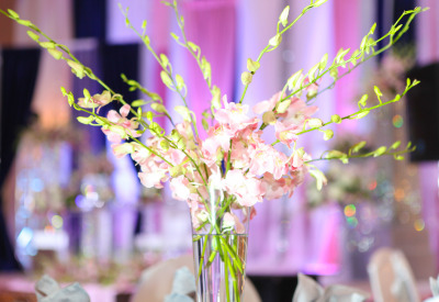 Orchid Centerpiece at Payal Banquets